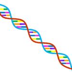 吃音症は子供に遺伝するのか