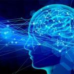 吃音の原因は脳障害が関係しているか